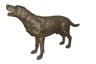 "Labrador Retriever Bronze Statue -  Size: 12""L x 50""W x 31""H."
